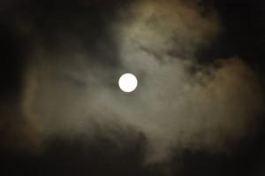 中秋の名月2